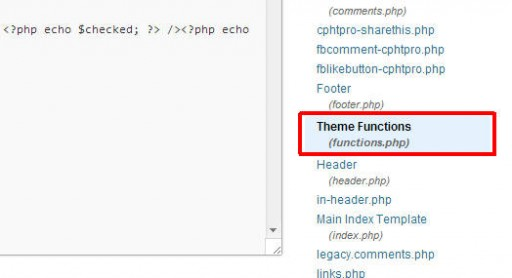 Selecting the file with theme functions for editing in wordpress